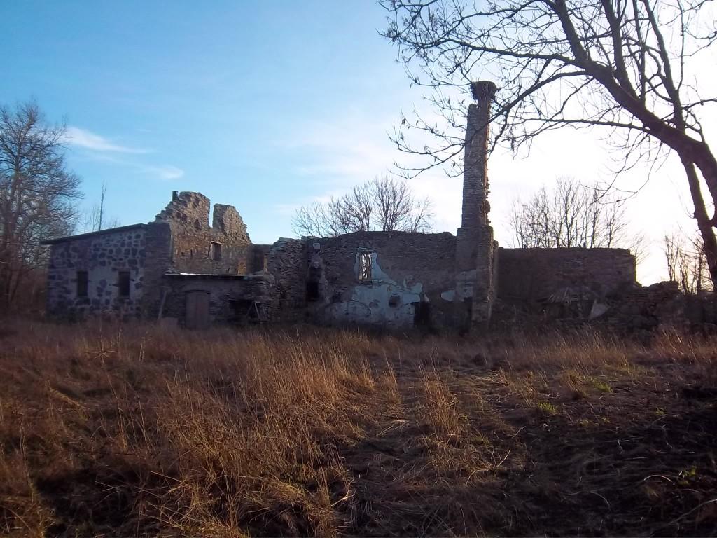 Vaade Rabivere mõisa viinavabriku varemetele põhjapoolt. K. Klandorf 28.12.2011
