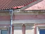 Detailivaade aadlielamu frontooni nurgale, Kuressaarele tüüpiline värvitud dolomiidist ehisplastika ja dekoreeritud vihmaveelehter.  Foto: M.Koppel 2012