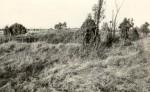 Kivikalme - lõunast, E. Väljal, 5.nov.198