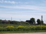 Vaade asulakohale läänest. Foto: Triin Äärismaa, 15.06.2012