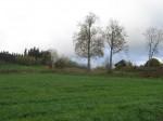 Asulakoht Soena külas. Foto: Viktor Lõhmus, 12.10.2012.