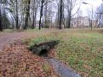 15745 Arkna mõisa park. Anne Kaldam 06.11.2012.