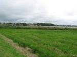 Kiviaja asulakoht. Foto: Tõnis Taavet, 15.08.2012.
