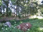 Pada mõisa piirdemüür. reg. nr. 16031.vaade põhjapoolsele piirdemüüri osale. aeg:  03.07.2012 pilt: Anne Kaldam