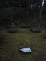 Hauad  Autor Peeter Nork  Kuupäev  12.11.2007