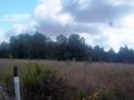 Vaade asulakohale reg nr 12000 läänesuunast. Foto: K. Klandorf, 29.08.2013.