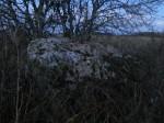 Kaitse all olev kivi pildistatud lõuna poolt. 08.11.13. Armin Rudi
