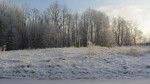 Kalmistu reg nr 13014. Foto: Ingmar Noorlaid, 20.01.2014.