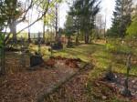 Kalmistu lääneosa. Foto Silja Konsa 16.10.2014