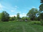 Sepa küla keldrite kobar. Foto: Rita Peirumaa, 15.07.2015