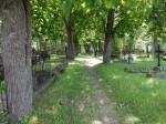 Kalmistu keskne allee. Foto Silja Konsa 05.07.2016.