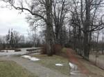 Albu mõisa park, vaade mõisa peahoone juurest algavale alleele. Foto: K. Klandorf 13.12.2016.