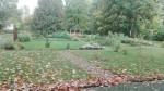Koigi mõisa park, vaade edelast. Foto: K. Klandorf 04.10.2017.