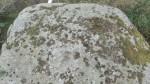 Lohukivi 9536 Jõgisoo külas, vaade kivi pinnale ja lohkudele. Foto: K. Klandorf 21.09.2018.