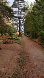 Haljala kalmistu, vaade peateele. Foto: M.Abel, kp 04.10.18