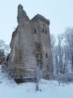 Lehtse mõisa peahoone varemed. Foto: Raili Uustalu 20.12.2018. Vaade säilinud seina fragmendile ja tornile lõunast.