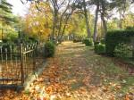Anseküla kalmistu. Foto: Keidi Saks, 17.10.2018