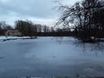 Udriku mõisa park. Foto: Raili Uustalu 07.12.2018. Vaade saarelt üle veekogu. Fotol vasakul on Udriku mõisa viinavabriku varemetele.