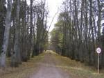 Arkna mõisa park, 15745  vaated pargis , allee ,vaade narva mnt- kirdest Anne Kaldam 30.10.2009