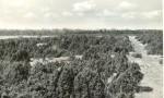 Kalmeväli - kagust. Foto: E. Väljal, 11.05.1982. (Muinsuskaitseameti arhiiv).