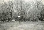 Kivikalmed reg nr 12358-12360 (19-21-k) - lõunast. Foto: E. Väljal.