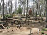 Iisaku kalmistu. Tõnis Taavet. 06.05.2010.