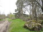 Vaade kivikülviga külatänavale, mille ühte serva ulatub välja kivikalme. Foto: M. Koppel, 2010.