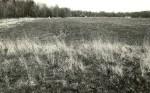 Asulakoht (vasakul kaugemal kivikalme reg nr 13321) - edelast. Foto: E. Väljal, 09.05.1991.