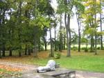 Udriku mõisa park reg. 15680, vaade edelapoolsele  pargialale -peahoone trepilt lõunasse autor Anne Kaldam  Kuupäev 29.02.2010