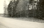 Maa-alune kalmistu - kirdest. Foto: M. Pakler, 14.05.1987.