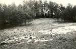 Linnamägi. Foto: M. Pakler, 26.04.1979.