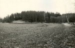 Linnamägi. Foto: M. Pakler, 16.04.1979.