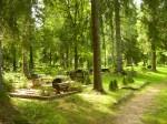 vaade kalmistul  Autor A. Peterson  Kuupäev  16.08.2005