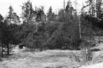 Maa-alune kalmistu - põhja-loodest. Foto: M. Pakler, 06.05.1981.