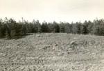 R. Kärner, 1980. aastad. Vaade kalmetele 17546 ja 17547 lõunast, maanteelt.