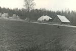 Asulakoht - kagust. Foto: A.-M. Rõuk, 23.04.1980.