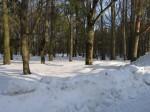 Arkna mõisa park, 15745  vaated pargis  autor:Anne Kaldam aeg: 04.02.2011
