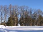 Arkna mõisa park, 15745  vaated pargis , vaade alleele, mõisa poolt navamntee poole  autor:Anne Kaldam aeg: 10.02.2011