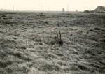 E. Väljal. 1980. aastad. Vaade mälestisele läänest
