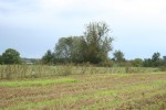 Vaade kalmele lõuna poolt. Foto: Armin Rudi, 01.09.2011.