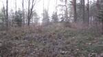 Vaade kalmistu alale lõunaküljest. Foto: Karin Vimberg, 15.11.2011.