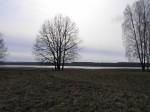 Kivi- ja rauaaja keraamika leiukoht mälestise kaitsevööndis. Foto: Martti Veldi, 20.03.2007.