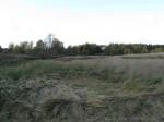 Kiviaja asulakoht. Foto: Tõnis Taavet, 04.10.2011.