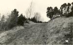 Kloodi Pahnimäe linnuse edelanurga vall ida-kagust. Foto: O. Multer, mai 1983.
