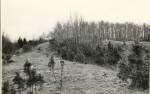 Kloodi Pahnimäe põhjavalli idaots ja kirdenurk kirdest. Foto: O. Multer, mai 1983.