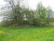 Kivikalme reg nr 10309. Foto: I. Raudvassar, 24.05.2007.