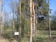 Tähise taha jääb haabade ja kaskedega kaetud kalmistu ala. Foto: Viktor Lõhmus, 02.08.2012.