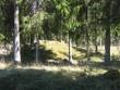 Vaade metsaäärsele kääpale järjestuses 9. kääbas kirde suunas. Foto:  Viktor Lõhmus, 04.05.2012.