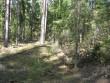 Vaade ümmargusele kääpale reg nr 11471. Foto: Viktor Lõhmus, 04.05.2012.