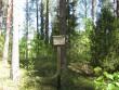 Selle tähise taha jääb 4 maastikus hästi eralduvat kääbast. Foto: Viktor Lõhmus, 24.05.2012.